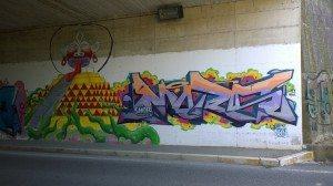 IMOLA (4)