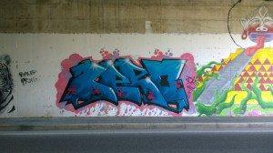 IMOLA (5)